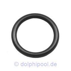 Verschraubungs O-Ring aus EPDM 2 Zoll